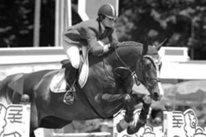 Equine Merc - Events