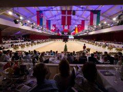 Equine MERC organiseert veilingen met meer dan 4,5 miljoen omzet in twee dagen