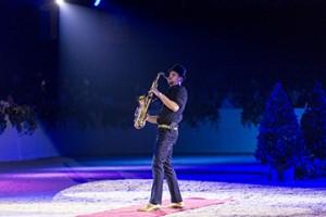 Saxofonist Dutch Sport Horse Sales auction equestrian