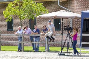 Dutch Sport Horse Sales veiling paarden evenement Equine MERC