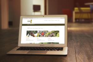 Website Stoeterij Vissers online horses paarden evenementen
