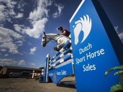 Nieuwe website Dutch Sport Horse Sales online