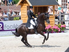 Dutch Dressage Championships: dates 2016 known