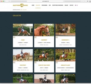 veiling paarden auction horses event marketing paarden