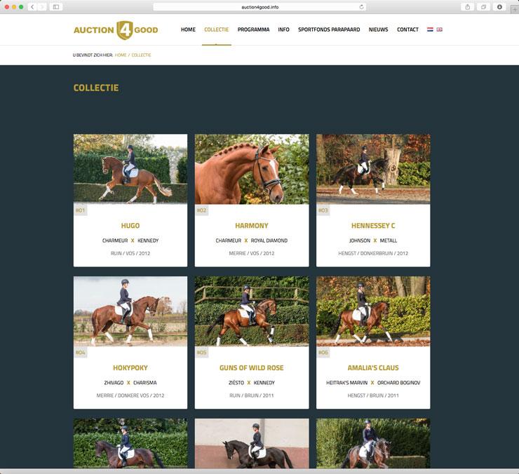 Website Auction4Good