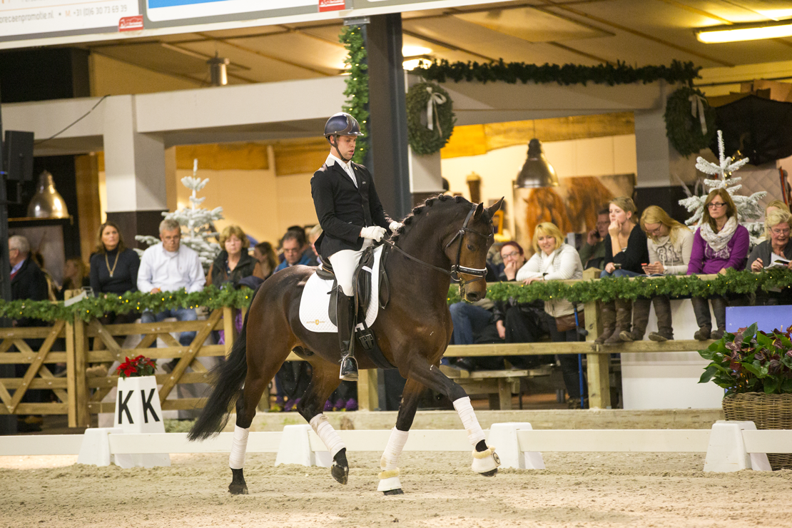 dressuurpaarden, veiling, auktion, auction, dressage