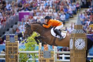 team nijhof, stallion brochure, equine merc, stallions