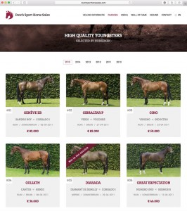 dutch sport horse sales, stal hendrix