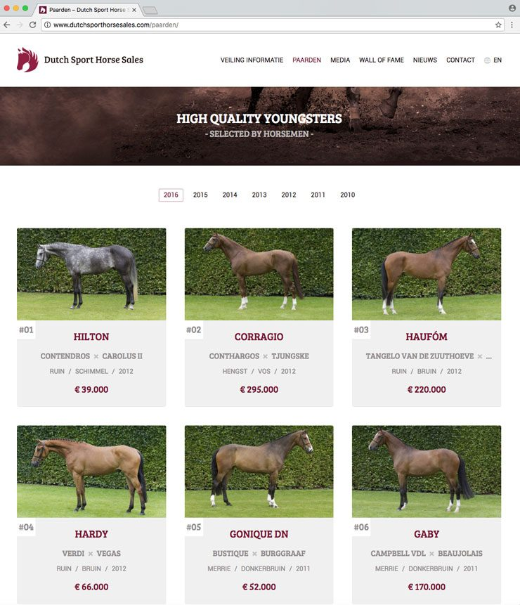 Website Dutch Sport Horse Sales
