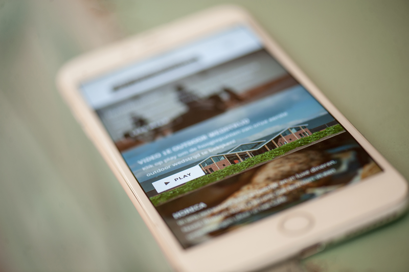 equine MERC, paarden, marketing, responsive, website
