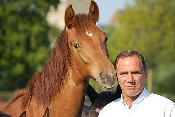 Bert Rutten new committee member Limburg Foal Auction
