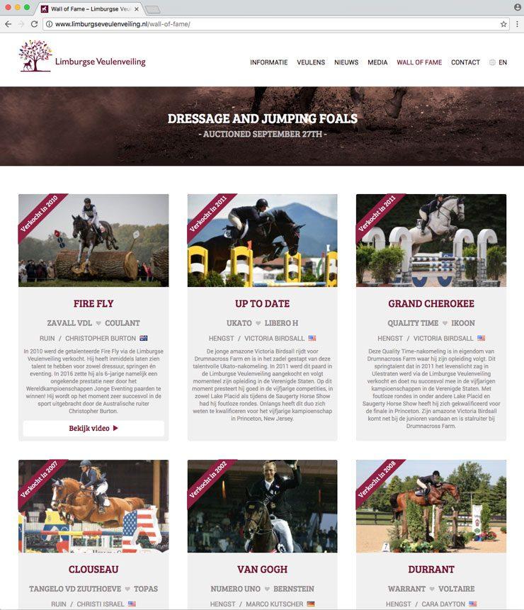 Website Limburgse Veulenveiling