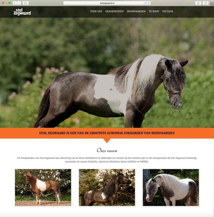 Website Stal Zegwaard