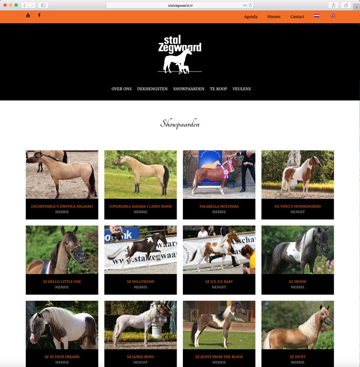 Website Stal Zegwaard