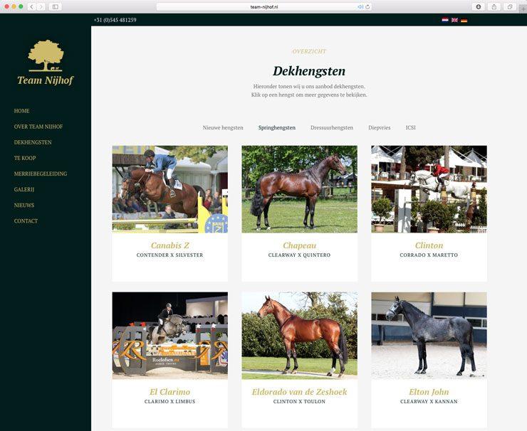 Website Team-Nijhof
