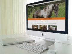 Minipaarden krijgen nieuwe website