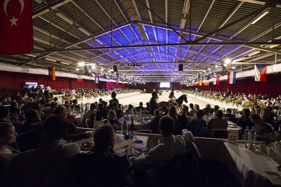 Trots: de collectie van de Dutch Sport Horse Sales is online!