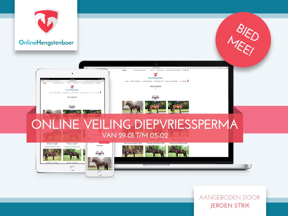 Nieuw! Online veiling met rietjes van diverse tophengsten