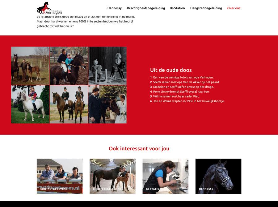 Website Verhagen Horse Service