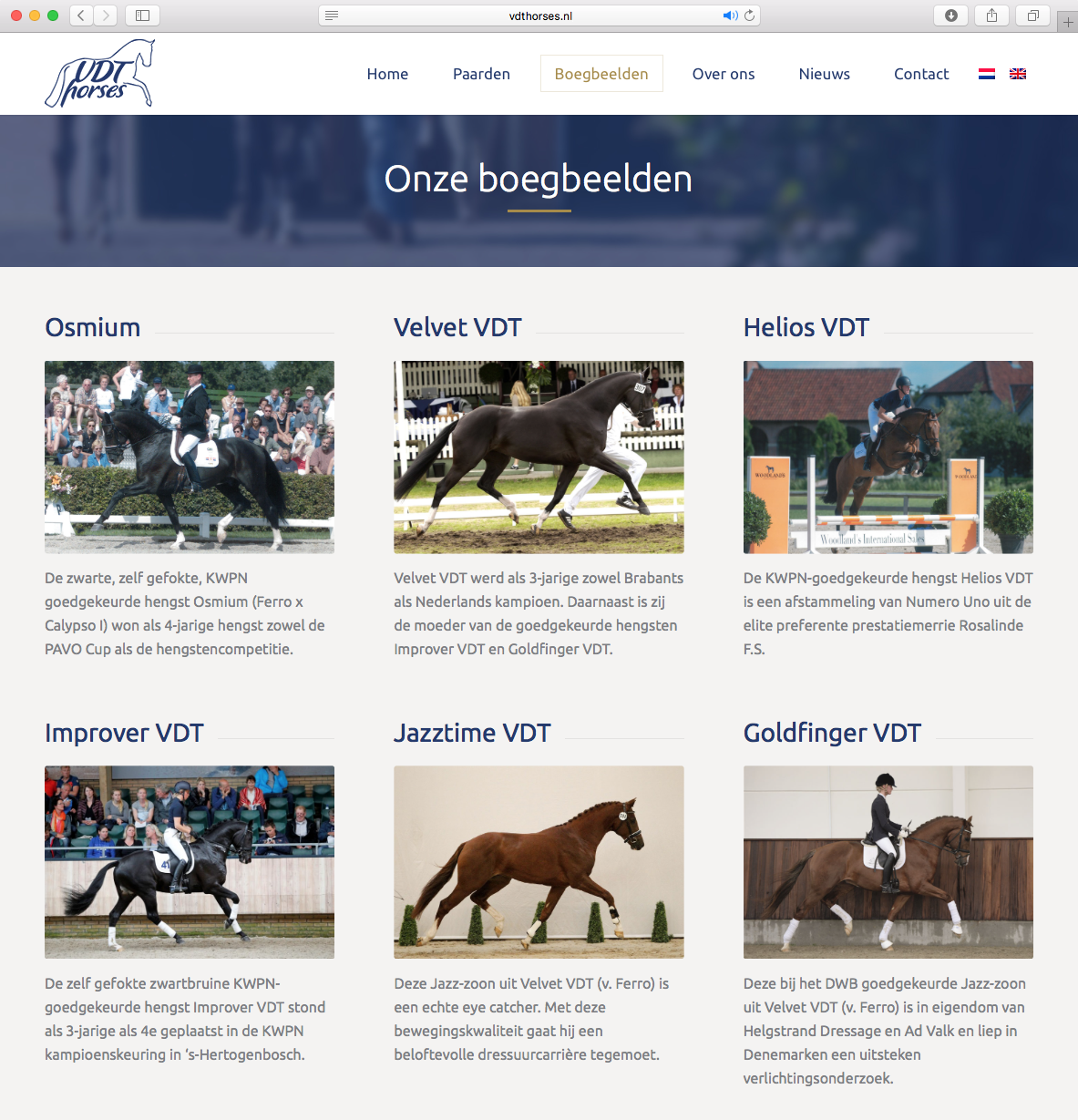 Website VDT Horses