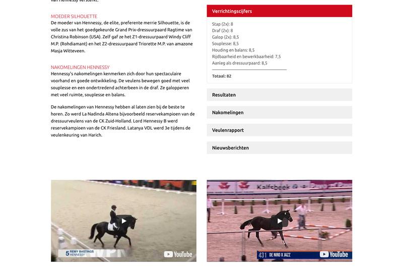 Alle informatie over de dekhengst Hennessy op de website van Verhagen Horse Service.