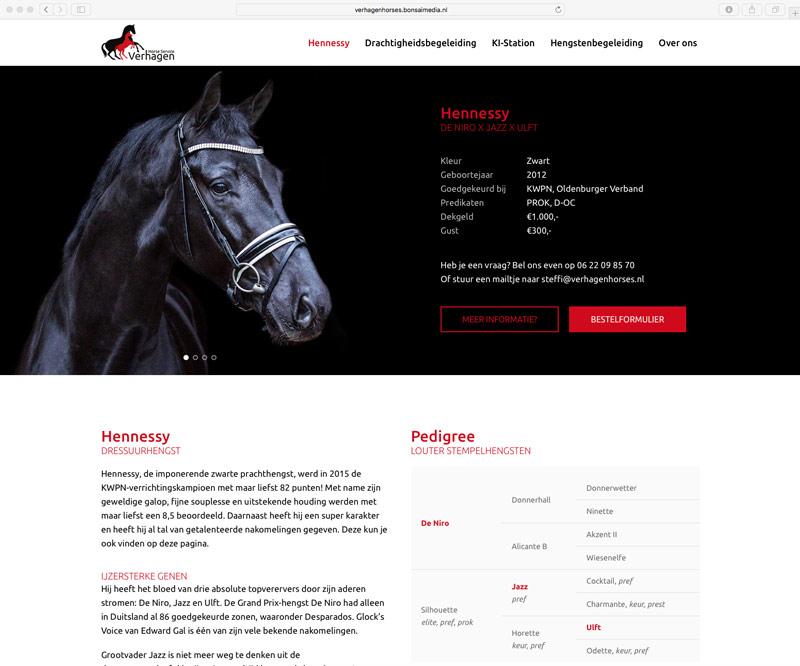 De pagina van de hengst Hennessy op de website van Verhagen Horse Service.