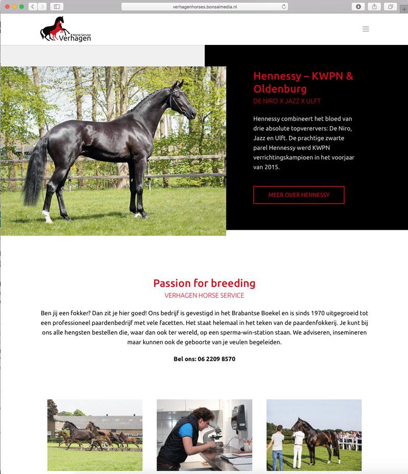 De homepage van de website van Verhagen Horse Service.