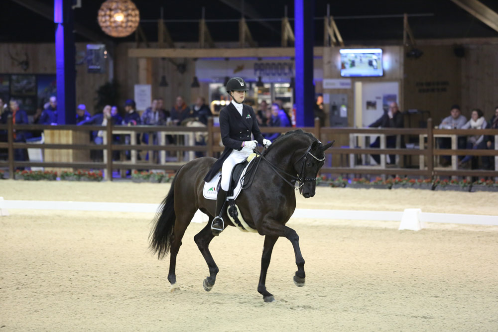 Equine MERC sponsor rubriek CDI4* Lier
