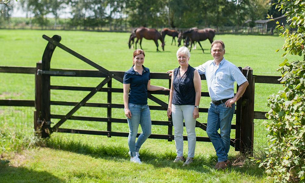 VDT Horses nu ook online vindbaar!